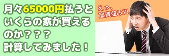 tsukiduki6500bnr01